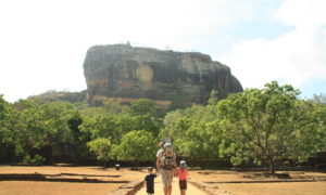 Sri Lanka: beaches, tea fields, safaris, temples