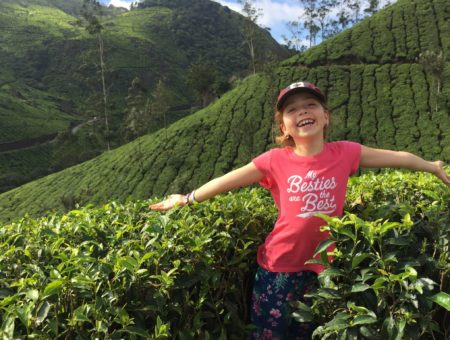Homestay Love in Munnar