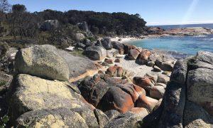 Our Tasmania Roadtrip – Part 1