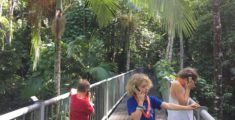 Daintree Discovery Centre Review with Kids