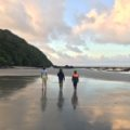 Exploring the Daintree and Cape Tribulation