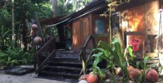 Where to Stay in Cape Tribulation?  Cape Trib Beach House Review