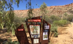 A Visit to the Alice Springs Desert Park
