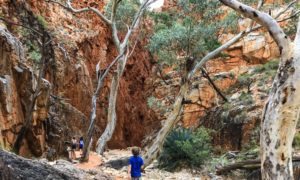 Into the Outback: Our Red Centre Australia Road Trip