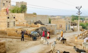 Experiencing Rural India in the Desert of Rajasthan