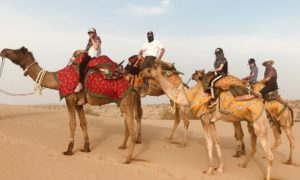 Indian Camel Safari, A Kid's Perspective