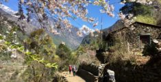 Our 10 Day Trek in the Everest Region of Nepal with Kids
