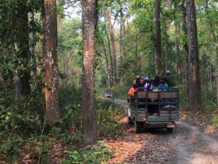 Should You Visit Chitwan National Park?